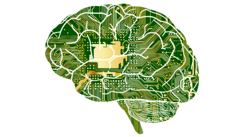 Brain | Oxford Academic
