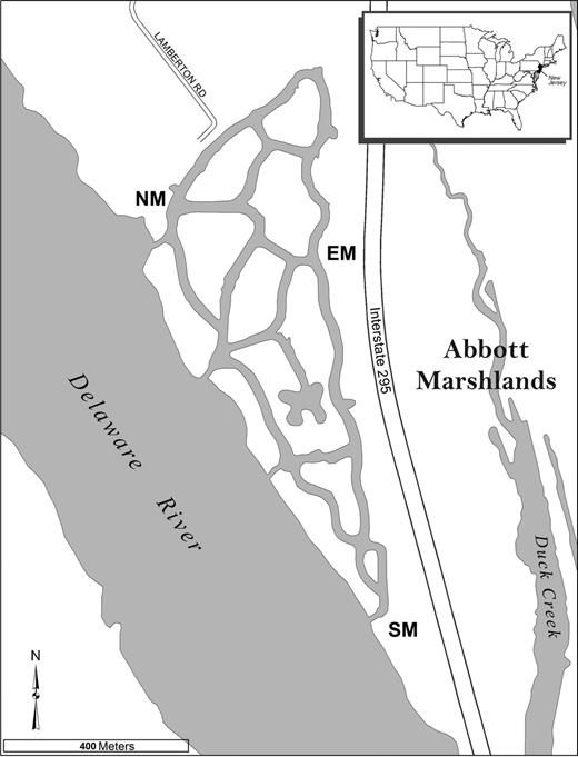 Dispersal potential of a tidal river and colonization of a created ...