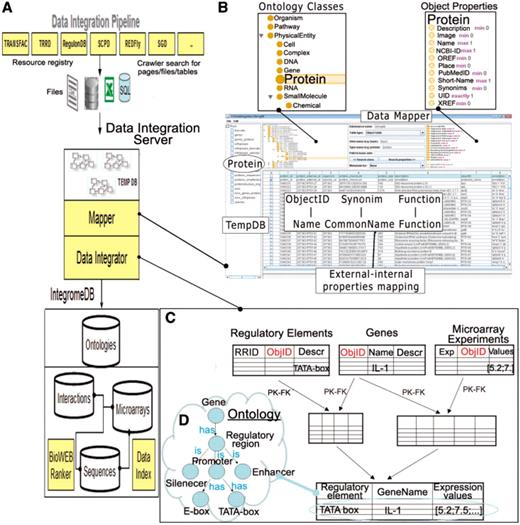 Semantic Integration Of Data On Transcriptional Regulation - Data mapper c