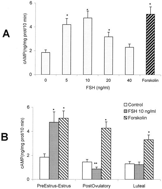 Follicle stimulating hormone receptor and its messenger ribonucleic effect of fsh on adenylate cyclase production in cervical tissue a cervical tissues from ccuart Choice Image
