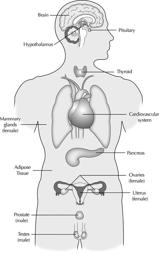 Endocrine Disrupting Chemicals An Endocrine Society Scientific