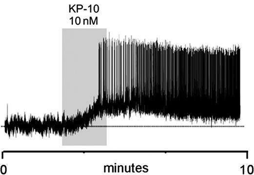Kisspeptin Gnrh Neurons: Kisspeptin Exerts A Potent Activational Effect On GnRH