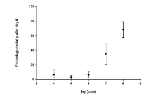 Effect Of Metarhizium Anisopliae Deuteromycotina Hyphomycetes On