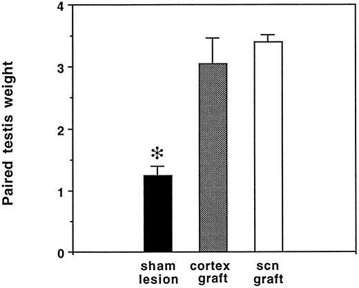 Effects Of Suprachiasmatic Transplants On Circadian Rhythms Of
