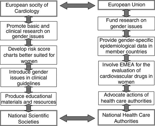 Cardiovascular Diseases In Women A Statement From The Policy