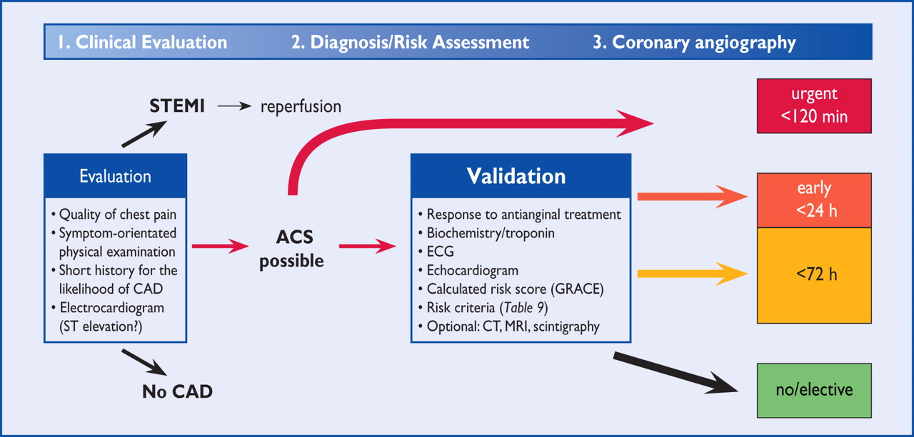 esc guidelines for the management of acute coronary syndromes in