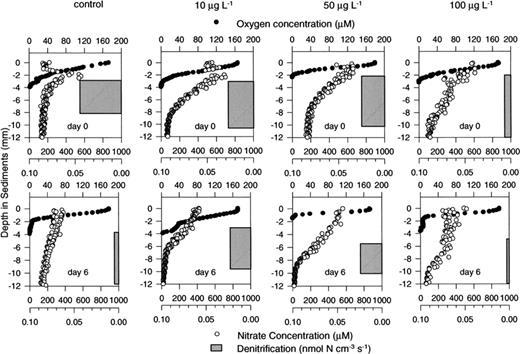 Responses To Atrazine Of Respiration Nitrification And