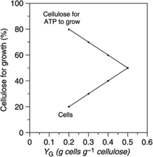 Quantitative Analysis Of Cellulose Degradation And Growth Of