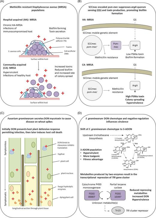 Trans Kingdom Identification Of Negative Regulators Of Pathogen