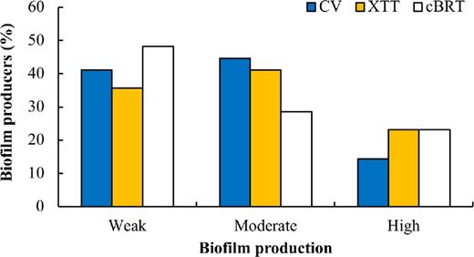 Clinical biofilm ring test a promising tool for the clinical percentage of biofilm formation in 60 clinical isolates of candida species measured by the crystal violet ccuart Gallery