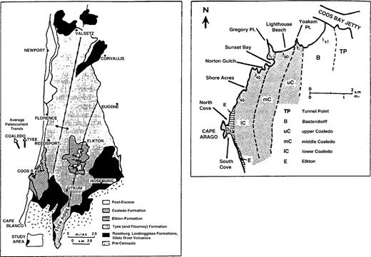 Magnetic stratigraphy and tectonic rotation of the middle Eocene ...