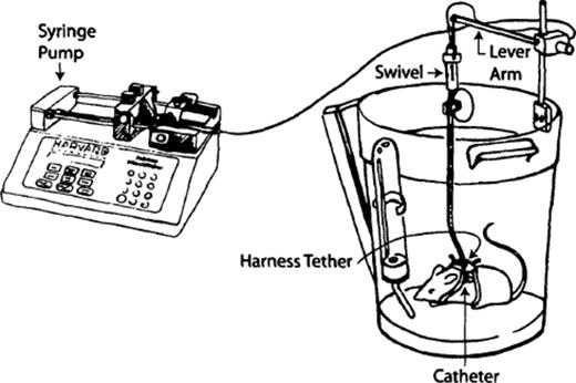 Schematic of tethered mouse with syringe pump shows
