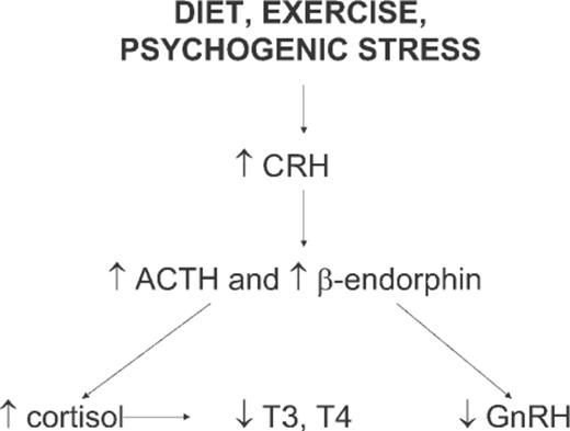 Ovarian Dysfunction Stress And Disease A Primate Continuum Ilar