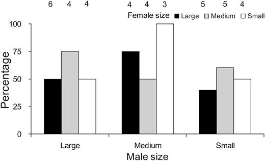 Effects Of Body Size On Mating Behavior And Spawning Success Of The