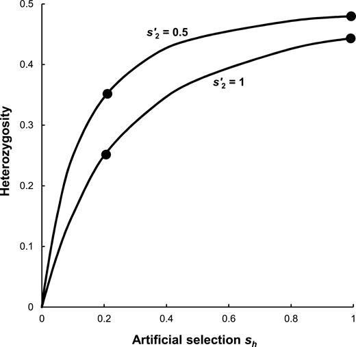 Heterozygote advantage the effect of artificial selection in the equilibrium heterozygosity for different levels of artificial selection sh for mutant heterozygotes and natural selection ccuart Image collections
