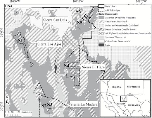 Biodiversity conservation in the madrean sky islands community locations of 7 study sites used to monitor the presence of medium and large terrestrial mammals fandeluxe Choice Image