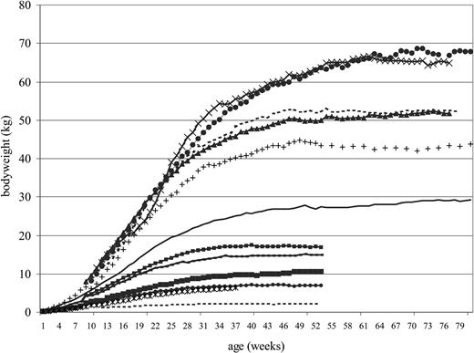 Body Weight Changes During Growth In Puppies Of Different Breeds