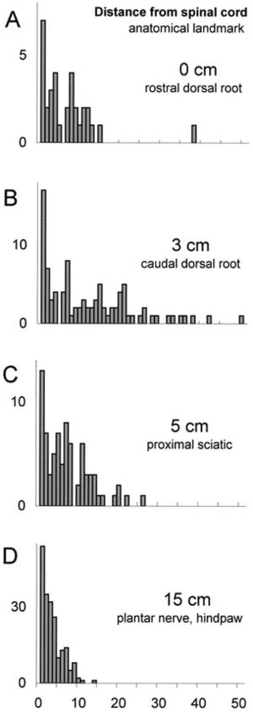 C-Fiber Structure Varies with Location in Peripheral Nerve | Journal ...