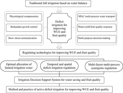 Deficit irrigation and sustainable water-resource strategies in ...