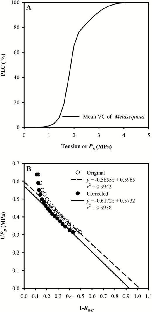 Impact Of Xylem Cavitation On Water Potential Isotherms Measured By
