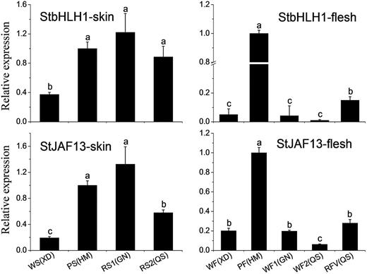 Quantitative analysis of transcript levels of StbHLH1 and