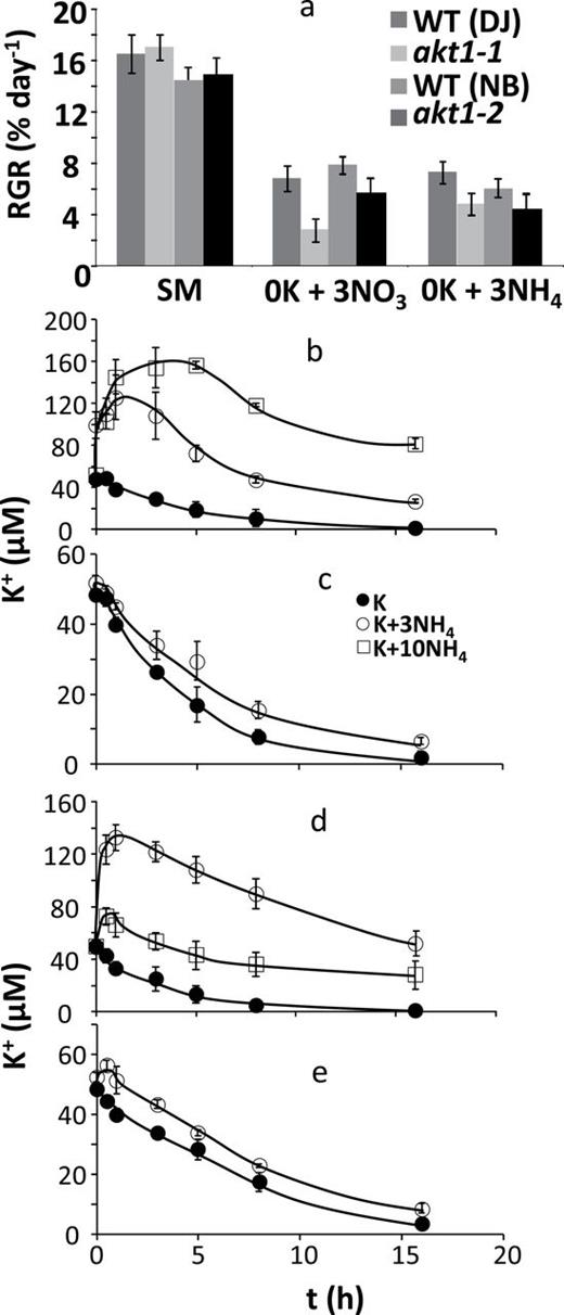 The effect of ammonium on growth rate and K+ uptake. (a