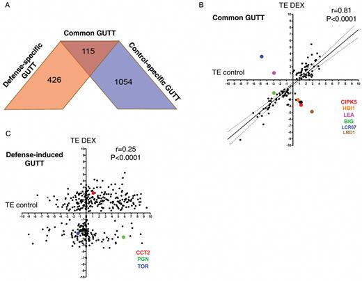 Translatome Analysis Of An Nb Lrr Immune Response Identifies