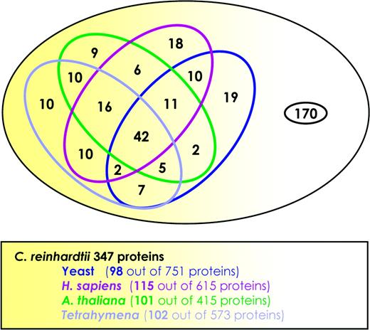 Proteomic Survey Of Chlamydomonas Reinhardtii Mitochondria Sheds New