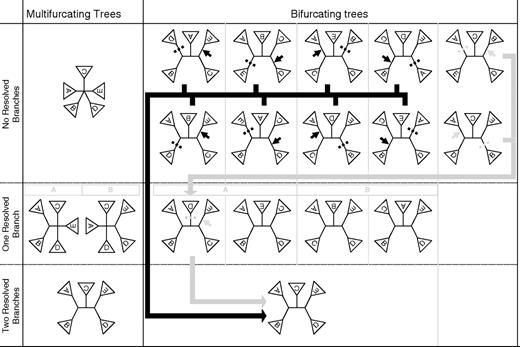 The effect of a degree 5 multifurcation on NNI and SPR tree search. Bottom row represents the optimal tree relating the five subtrees, with the top and middle rows representing steps toward this tree. The left-hand column shows the steps that star decomposition takes when resolving the multifurcation. The right-hand column and subcolumns describe hill-climbing steps on multifurcating trees. NNI steps move down a row in a subcolumn, with each rearrangement representing the resolution toward a branch in the optimal tree. In the top row, the eight leftmost bifurcating trees can all resolve an internal branch and move down the column. NNI can get stuck at either of the two rightmost trees because they can only move to the four trees level with them in the no resolved branches row, none of which can provide an improvement in likelihood. The arrows show example SPR moves, with all nonresolved bifurcating trees able to reach the optimal tree via intermediates that increases likelihood, either by one step (black arrow) or by two steps (gray arrow; equivalent of star decomposition).