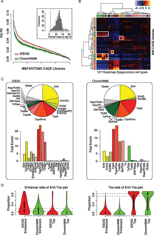 Accurate And Reproducible Functional Maps In 127 Human Cell Types