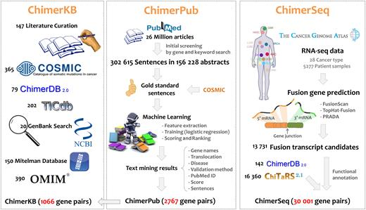 Overview of ChimerDB 3.0. Each number indicates the number of gene pairs from relevant resources.