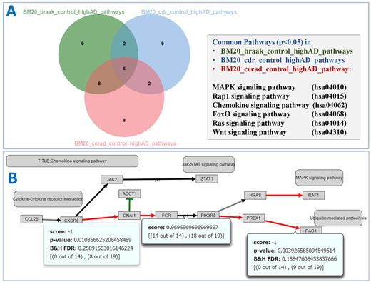 Minepath A Free Interactive Pathway Analysis Web Server