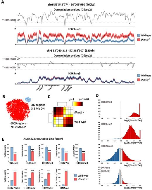 Increased H3k9 Methylation And Impaired Expression Of Protocadherins