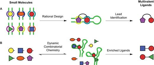 Insights into the development of chemical probes for RNA | Nucleic ...