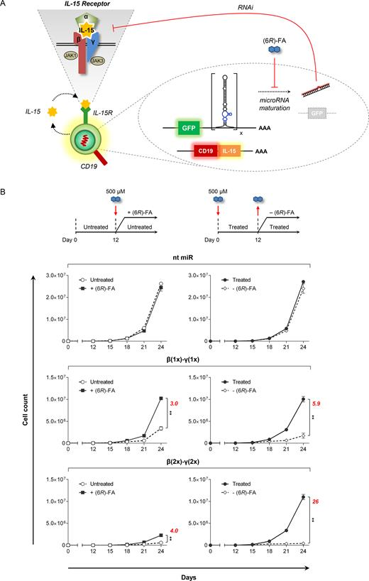 Regulation of T cell proliferation with drug-responsive microRNA ...