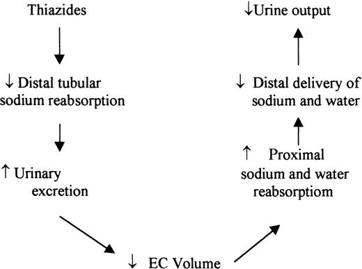 Mechanism Of Action Of The Paradoxical Effect Of Thiazide
