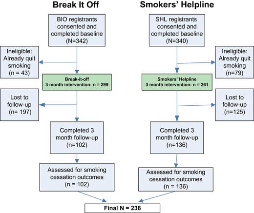 Effect Of A Digital Social Media Campaign On Young Adult Smoking