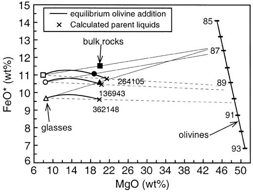 Processes In High Mg High T Magmas Evidence From Olivine Chromite