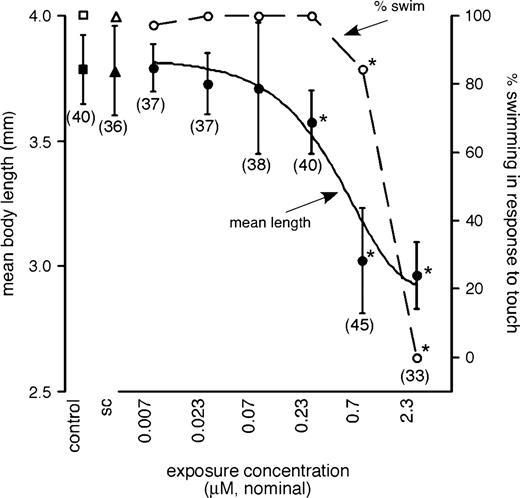 Developmental Neurotoxicity Of Fipronil Notochord Degeneration And