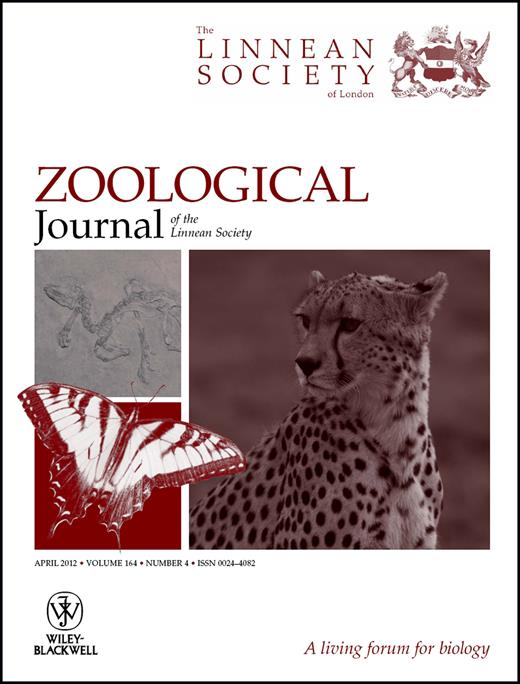 Mandible shape in marsupial and placental carnivorous mammals a issue cover fandeluxe Choice Image